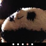 スマホ用画像ギャラリー(横スクロール、自動スライド可、フリック操作可)[jquery]記事のアイキャッチ画像