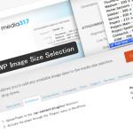 『add_image_size()』で追加したサイズの画像を記事本文に挿入[WordPress]記事のアイキャッチ画像